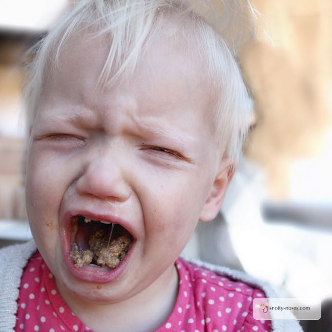 My Toddler is Screaming...for no reason at all. The fickle nature of toddlers and why they scream.