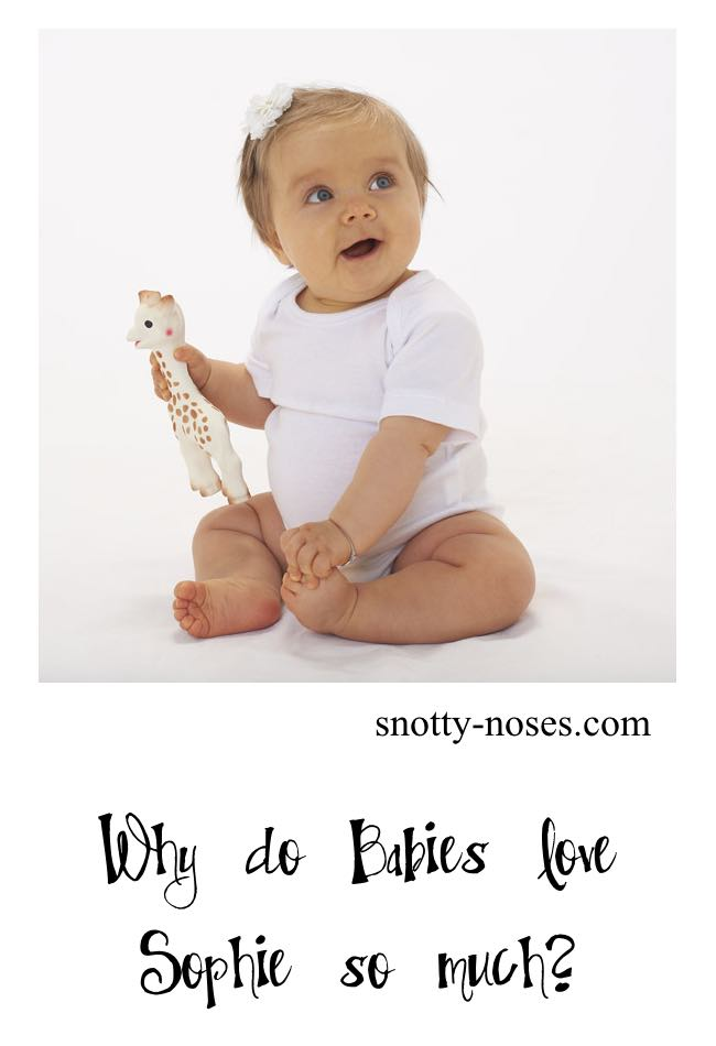 Sophie the Giraffe is loved by babies as she appeals to all five sense. She's great for baby teething