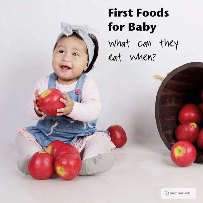 First Foods for Baby. What foods can I give my baby and when?