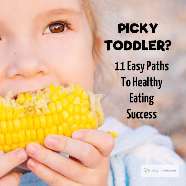 Help! My toddler won't eat! 10 Great Tips to Transform your Toddler into a Healthy Eater