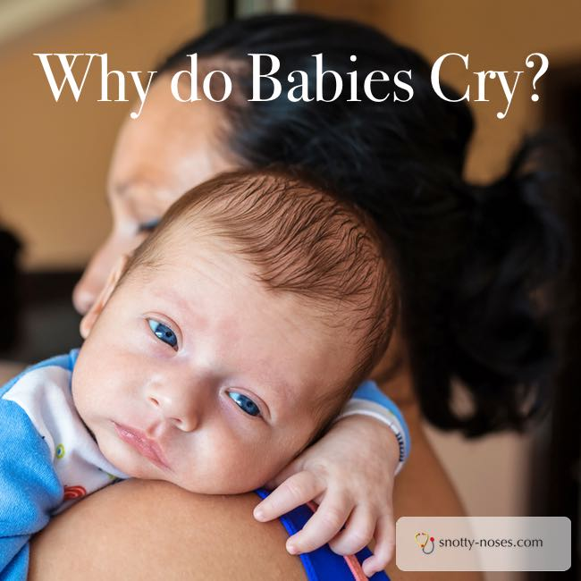 Why do Babies Cry? Did you know that babies feel stress just like we do? How their brain develops is really interesting!