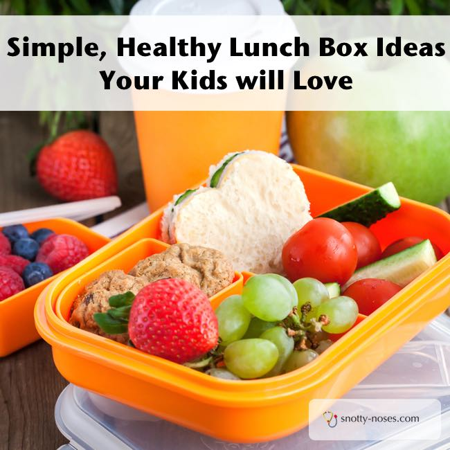 Simple Healthy Lunch Box Ideas that your Kids will Love. Healthy doesn't have to be complicated!