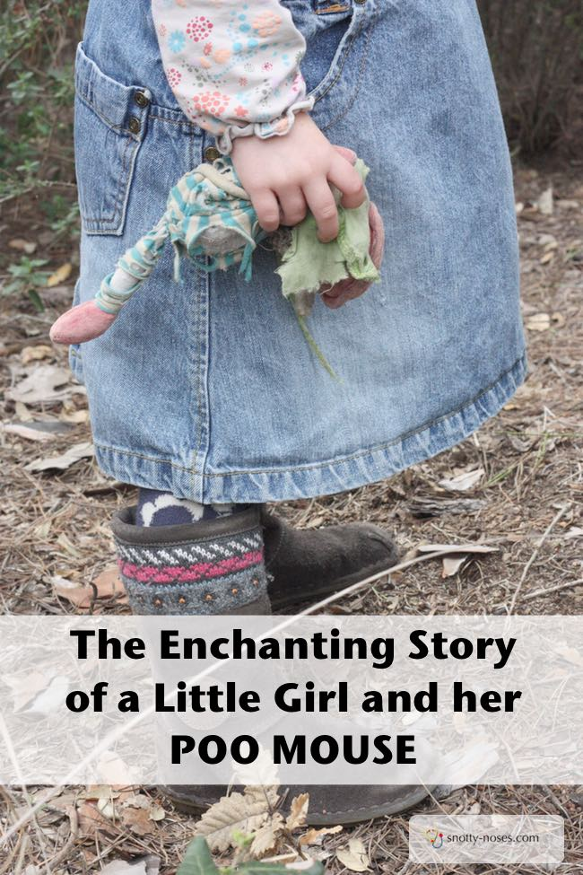 Poo Mouse. A Love Story. The enchanting story of a little girl and a little mouse.