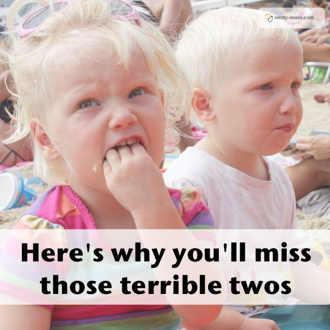 Here's Why You'll miss the Terrible Twos. 20 things that you love and hate about your toddlers