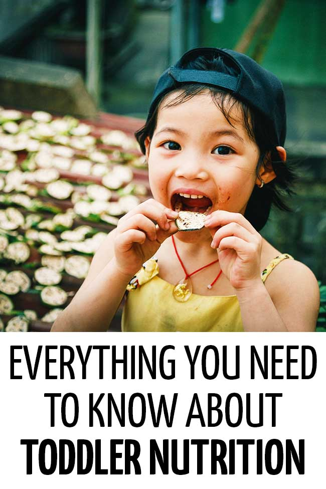 A toddler eating a piece of cucumber. Everything you need to know about toddler nutrition!