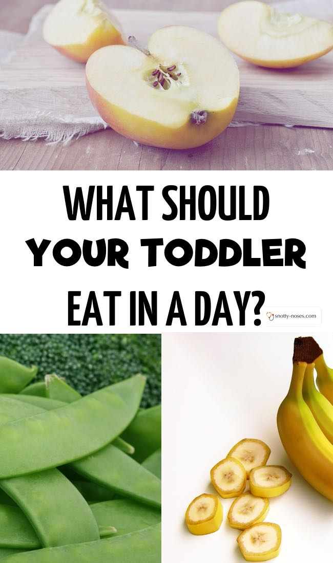 What should your toddler eat in a week? A break down of toddler nutrition by a pediatric doctor. Great cheat sheet to download.
