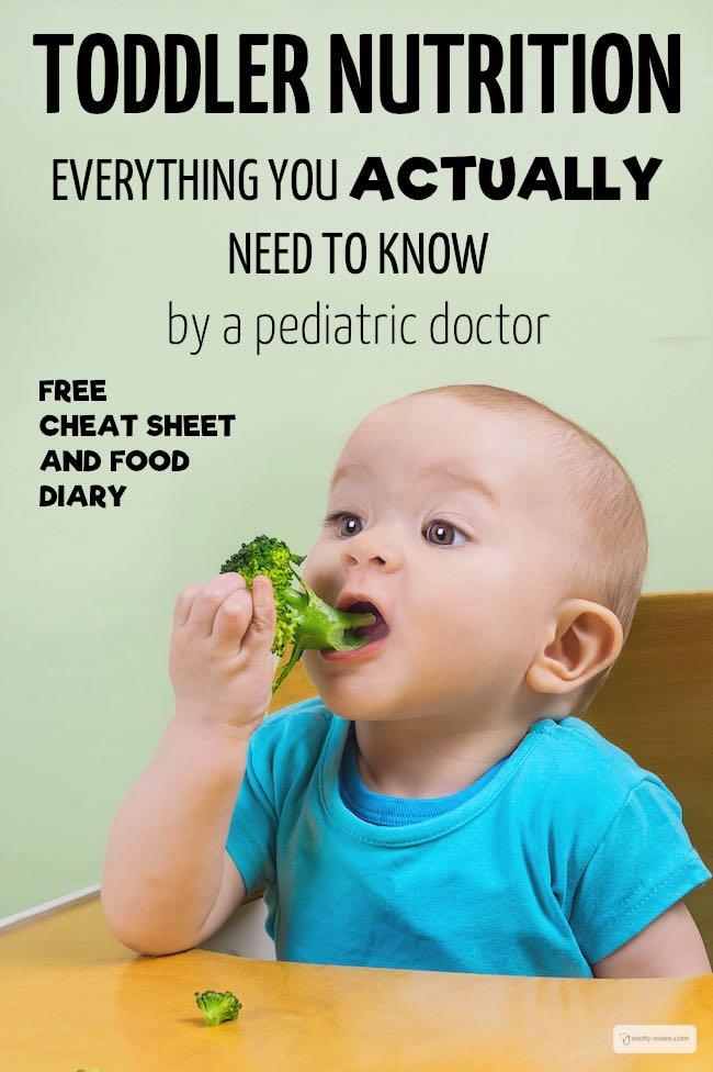 Toddler Nutrition. Everything you actually need to know. Written by a pediatric doctor.