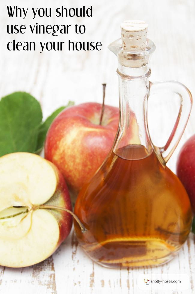 Why vinegar is an awesome household cleaner. I wish I knew this before!