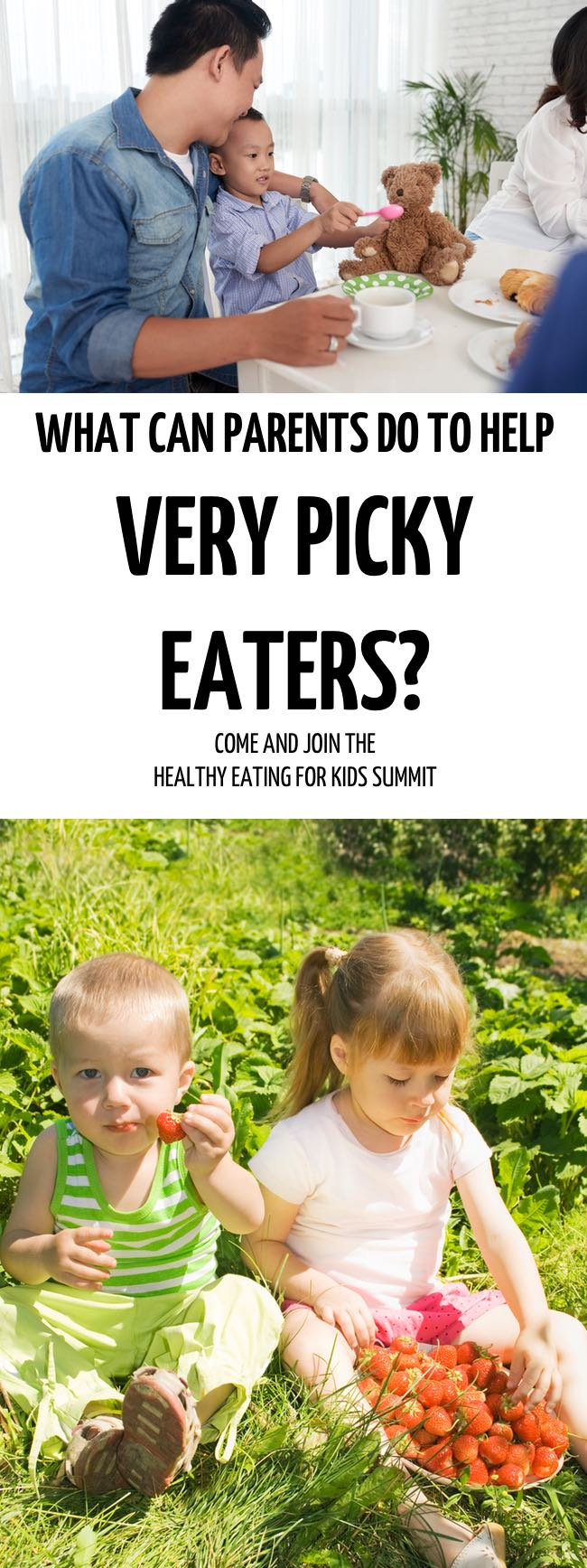 How can Parents Help Very Picky Eaters? Come and sign up for the Healthy Eating for Kids Summit and, learn how to stop meal time battles and find the stress free way to teach them healthy eating habits. #toddler #fussyeater #fussytoddler #toddlerwon'teat #pickyeater #parenting #positiveparenting