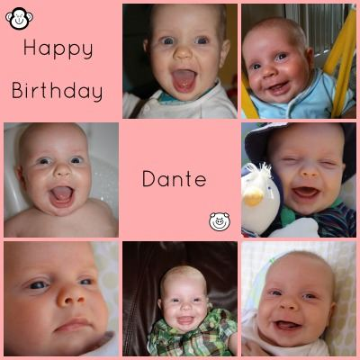 Happy Birthday Dante