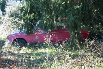 An abandoned car /></p> <p><img src=